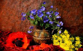 花卉, 花瓶, 静物