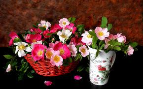 Fiori, Cestini, vaso, ancora vita