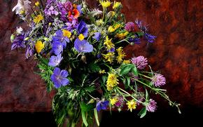 цветы, ваза, натюрморт
