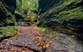 Turkey Run State Park, штат Индиана, скалы, проём, осень, пейзаж