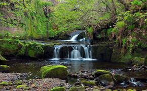 cascata, pietre, piccolo fiume, natura
