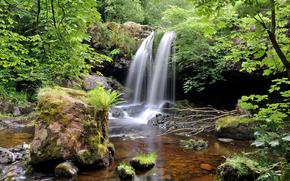 cascata, pietre, alberi, piccolo fiume, natura