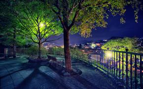 Nagasaki, Giappone, città, alberi, Un banco, riposo, luci