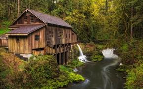foresta, fiume, cascata, mulino, paesaggio