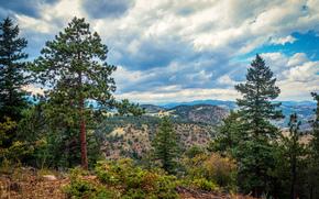 горы, деревья, пейзаж