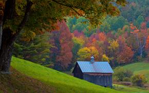 Singolo Shack, Vermont, autunno, casetta solitaria