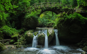 cascata, ponte, arco, foresta, natura