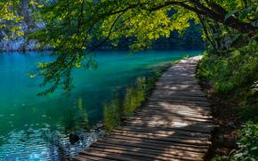 Croazia, fiume, ponte, paesaggio