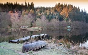alberi, Lago, Loch Ard, Scozia, GB