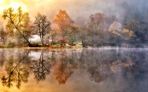alberi, riflessione, Lago, Loch Ard, Scozia, GB