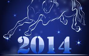 contento, vacanze, nuovo, anno, 2014