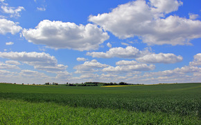 field, clouds, landscape