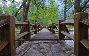 Yosemite National Park, river, bridge, trees, landscape