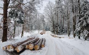 зима, дорога, лес, брёвна, пейзаж