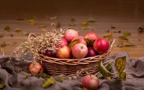 nature, fresh, fruits, basket, apples, autumn, harvests