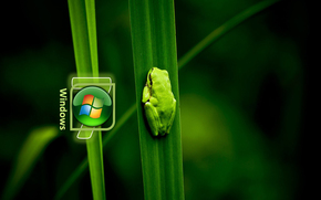 wallpapers, wallpapers for windows, 3d