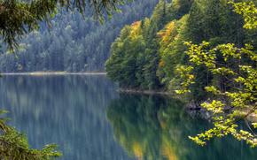 Lago Eibsee, Baviera, Alemanha, Eibsee Lago, Bayern, Alemanha, superfície da água, floresta, reflexão, outono, lago
