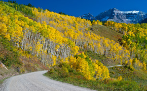 autumn, Mountains, trees, road, landscape