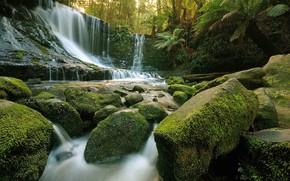 водопад, скалы, деревья, камни, природа