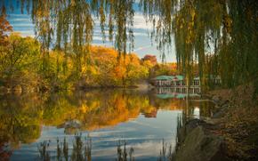 在纽约中央公园, 秋, 池塘, 树