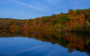 lake, forest, autumn, trees, landscape
