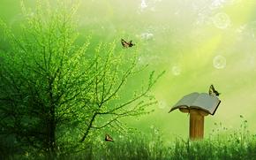 древо, бабочки, книга, 3d, art
