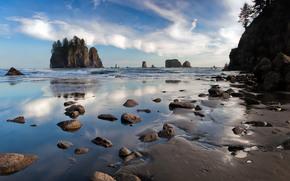 Побережье штата Орегон, скалы, камни, пейзаж
