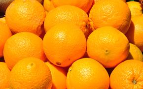 oranges, fruit, food