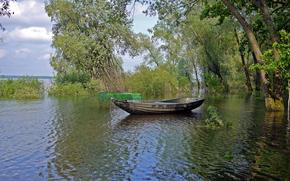 lake, trees, boat, landscape