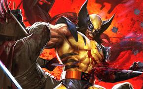 arte, X-Men, Wolverine, Wolverine, frizioni, rabbia, guerriero, combattimento, lama, comic strip, cartone animato