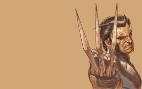 art, X-Men, Wolverine, Wolverine, clutches, rage, blade, comic strip, cartoon
