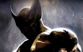 art, X-Men, Wolverine, Росомаха, когти, ярость, лезвие, комикс, cartoon