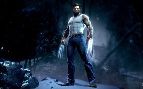 игры, X-Men, Wolverine, Росомаха, когти, ярость, лезвие, комикс, cartoon