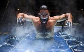 Hugh Jackman, X-Men, Wolverine, Wolverine, clutches, rage, blade, comic strip, cartoon
