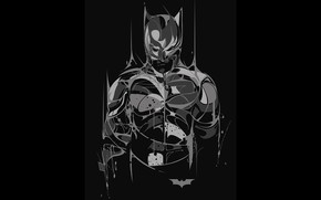 art, Batman, Bruce Wayne, Dark Knight, The Dark Knight, comic strip, cartoon