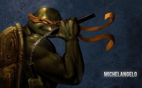 Michelangelo, arte, Tartarughe, ninja, Adolescenti Mutant Hero Turtles, TMHT, comic strip, cartone animato