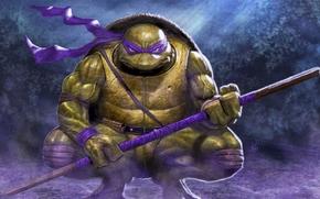 Donatello, arte, Tartarughe, ninja, Adolescenti Mutant Hero Turtles, TMHT, comic strip, cartone animato