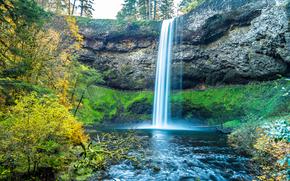 automne, forêt, rivière, arbres, cascade, paysage