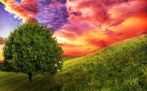 field, tree, 3d, art