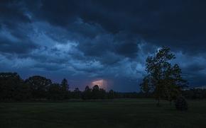 field, trees, CLOUDS, lightning, landscape