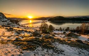 coucher du soleil, rivière, arbres, noyaux, paysage