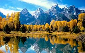 景观, 山, 性质