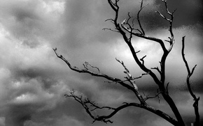Depression, black-white, tree, cloud, clouds, sky, dead