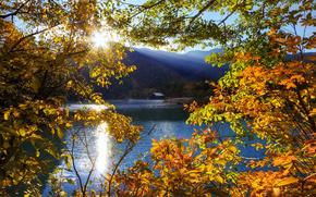 осень, озеро, горы, япония, пейзаж