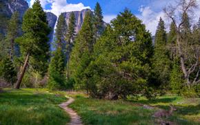 Yosemite National Park, Sierra Nevada, mountains of California