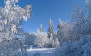 winter, snow, trees, frost, sky