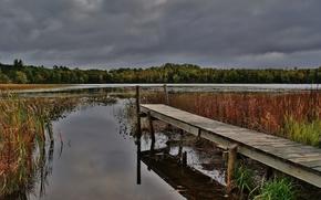 See, Herbst, Brücke, Bäume, Landschaft