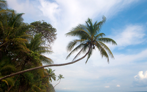 La Leona, Eco Lodge, Costa Rica