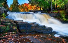 河, 瀑布, 秋, 岩石, 树, 景观