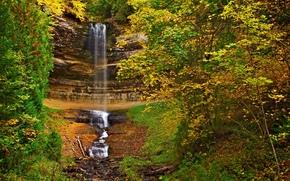 秋, 瀑布, 岩石, 树, 性质